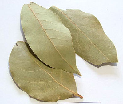 bay-leaves-dried-magical-herb-[4]-451-p