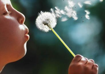child-blowing-dandelion